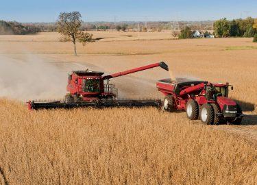 Habrá más dólares financieros y la cosecha complica el invierno